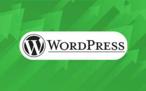 Mejor plantilla WordPress